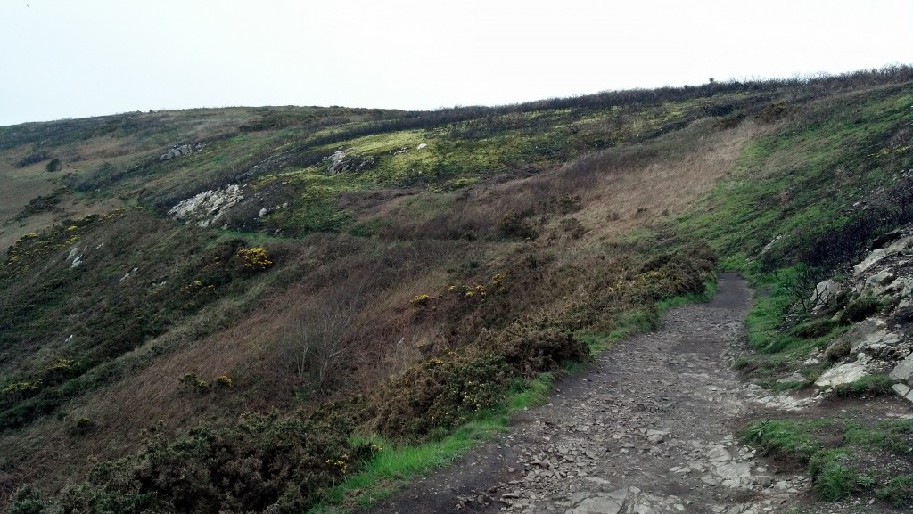 Howth Head Wilderness
