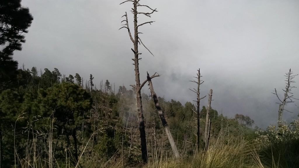 Acetango Volcano in Guatemala