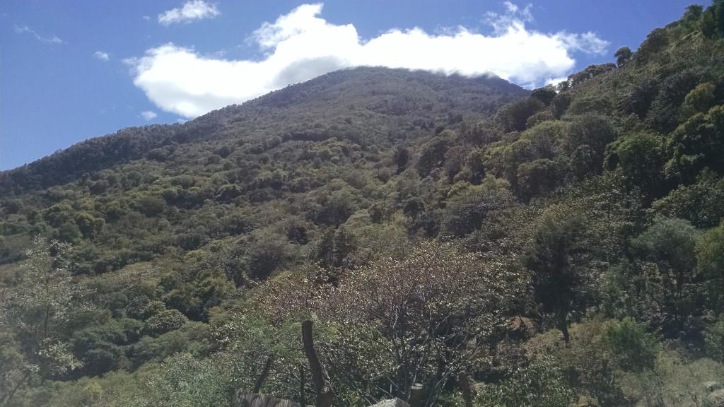 Volcano San Pedro
