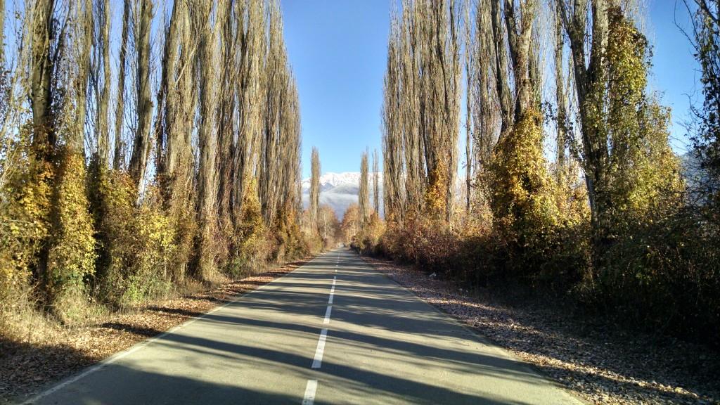 Road to Nekresi Monastery