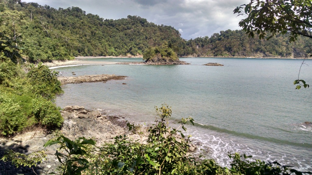 Shoreline in Manuel Antonio Park