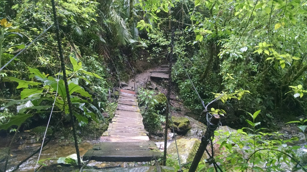 Bridge in Salento, Colombia