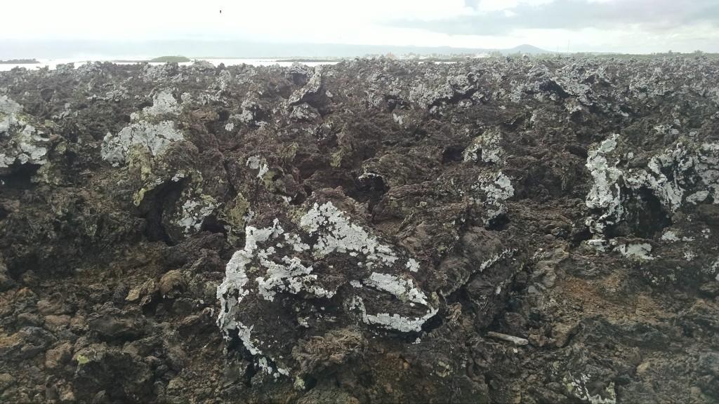 Rocks on Isabela Island