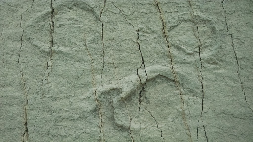 Dinosaur Footprints in Sucre, Bolivia