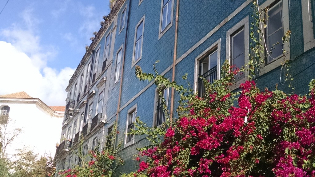 House and Flowers in Lisbon