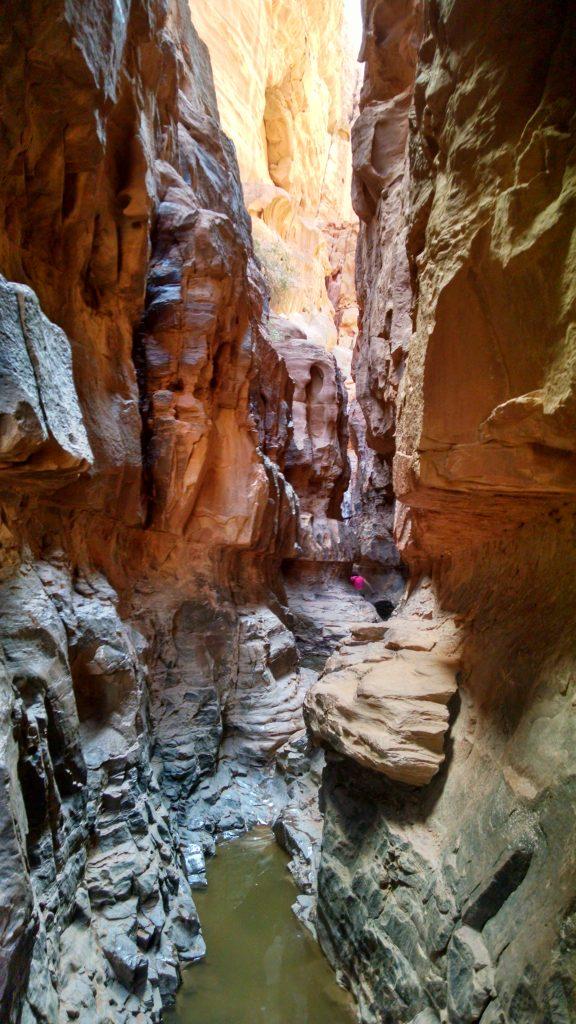 Water in Wadi Rum